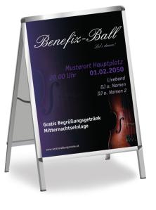 Plakat Ball Musik Rosa